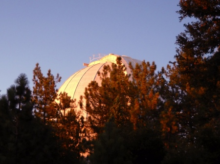 The immense dome of the 100-inch Hooker telescope looms through the trees like a mountain.