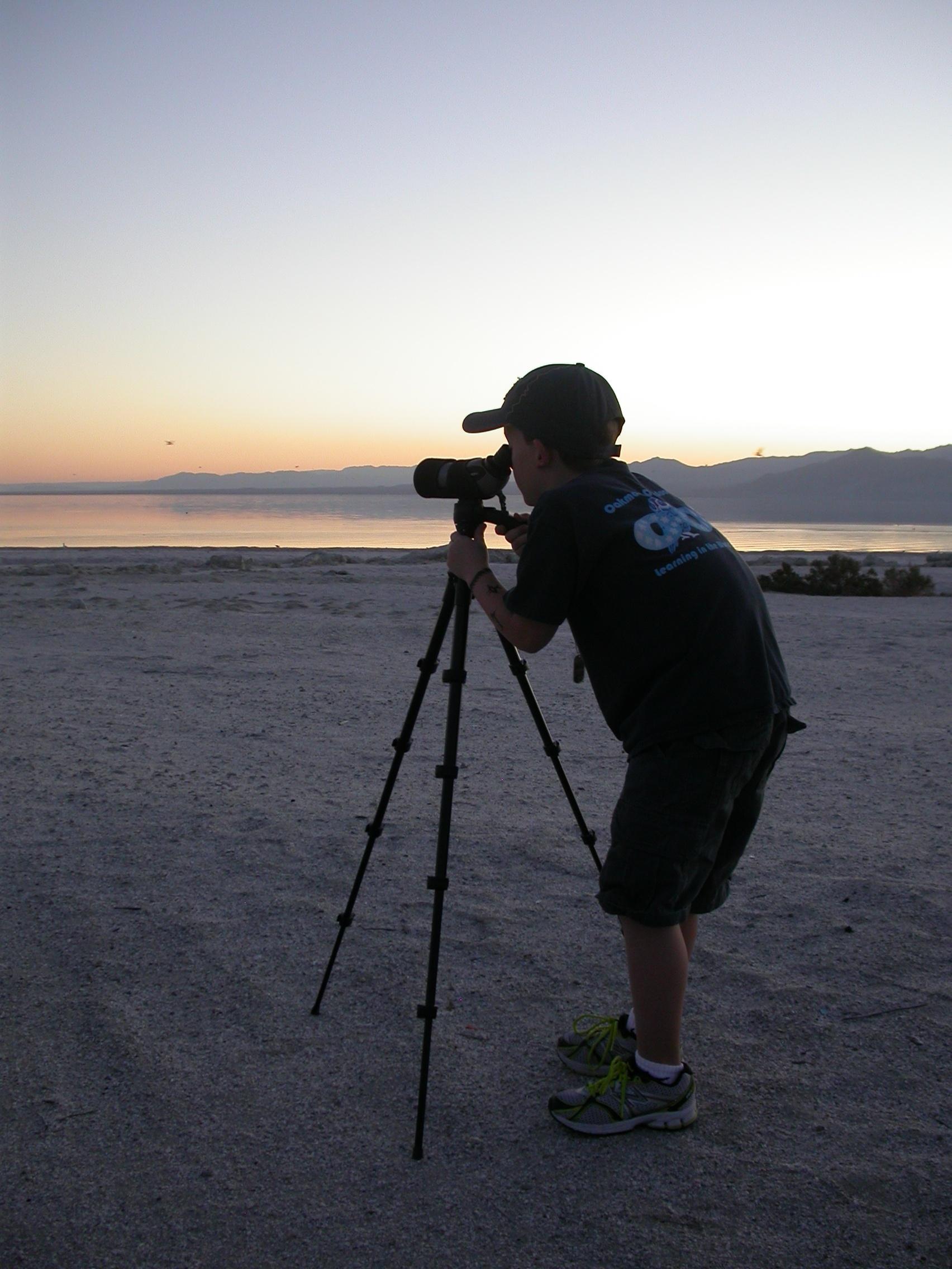 Sunset birding